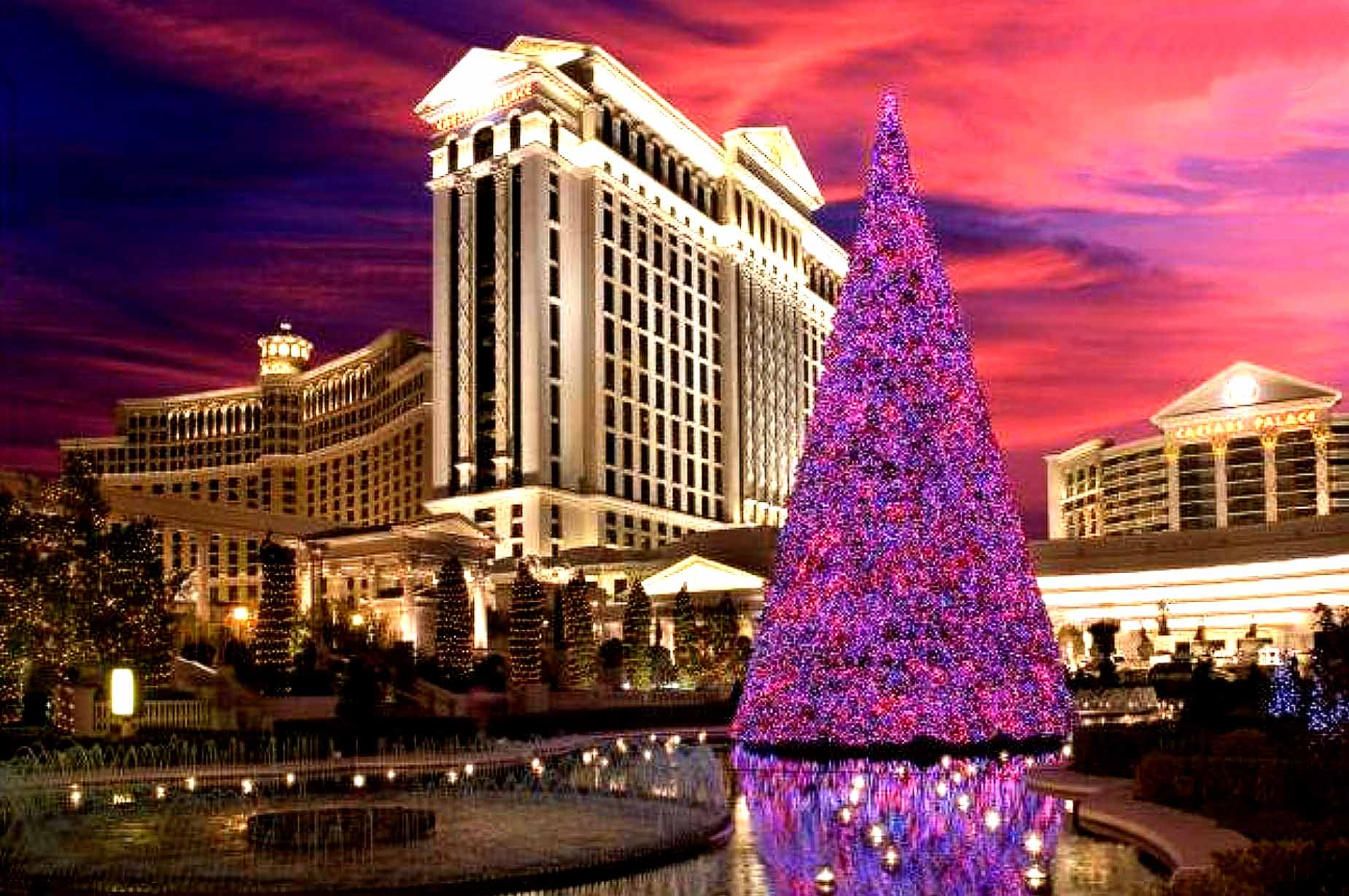 DOES CEASAR LOVE SANTA – Amazing Holiday Deal In Las Vegas –